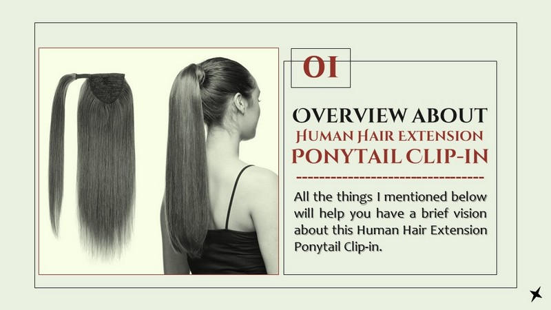 Overview about Human Hair Extension Ponytail Clip-in