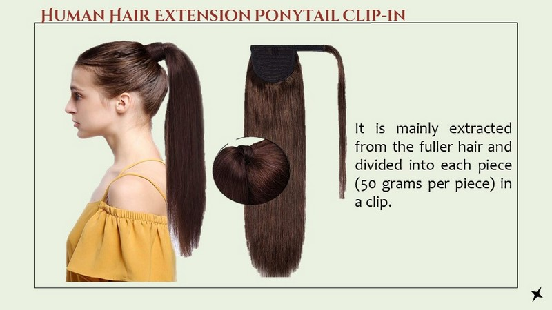 What is Human Hair Extension Ponytail Clip-in?